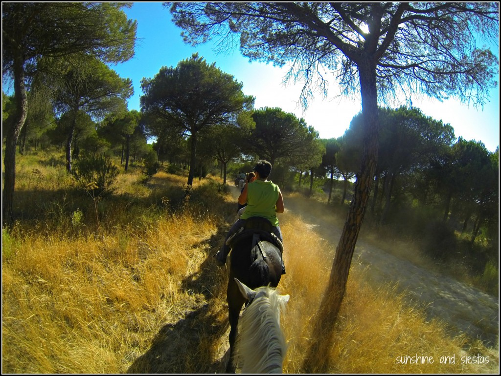 Horseback Riding in Doñana National Park, Spain