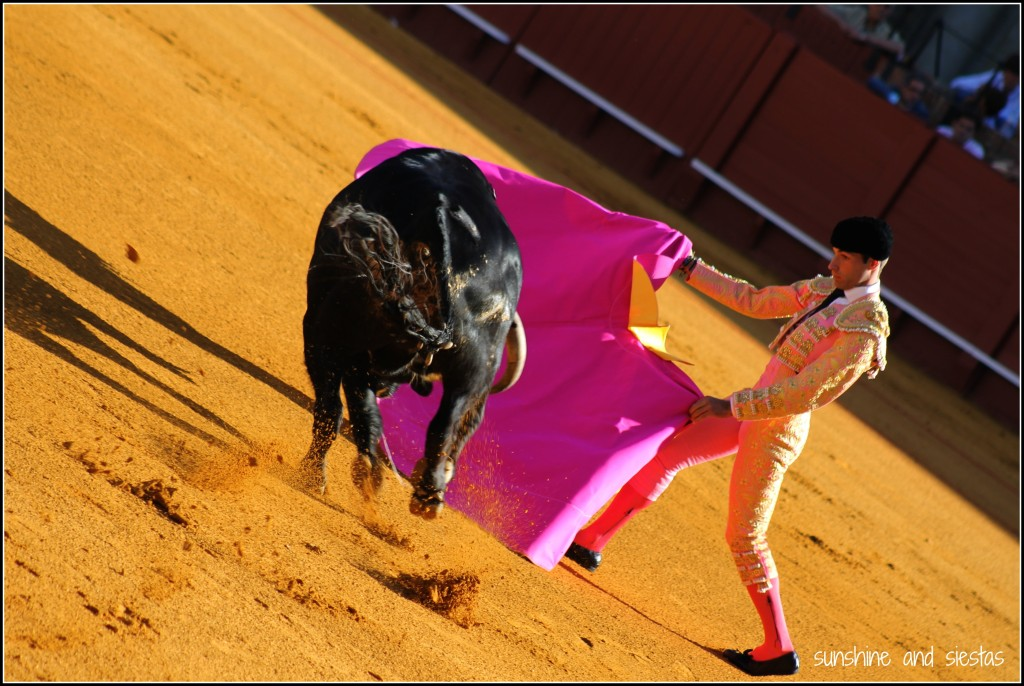 bullfighting in Seville Spain