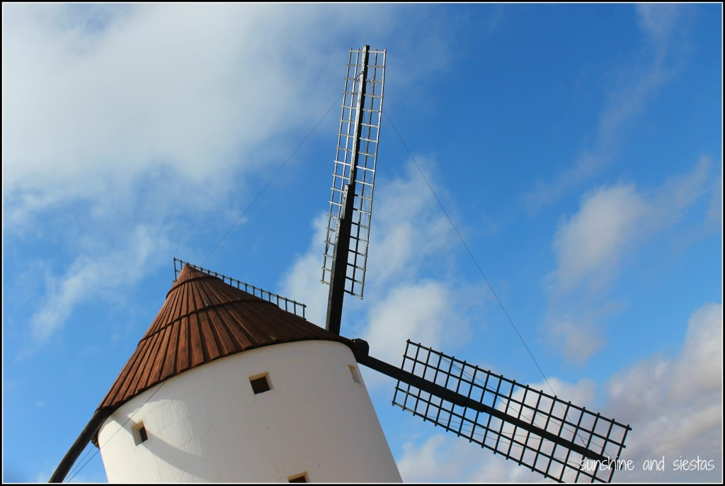 windmills and Don Quijote
